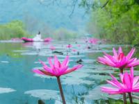 Giá vé tham quan chùa Hương mới nhất năm 2021